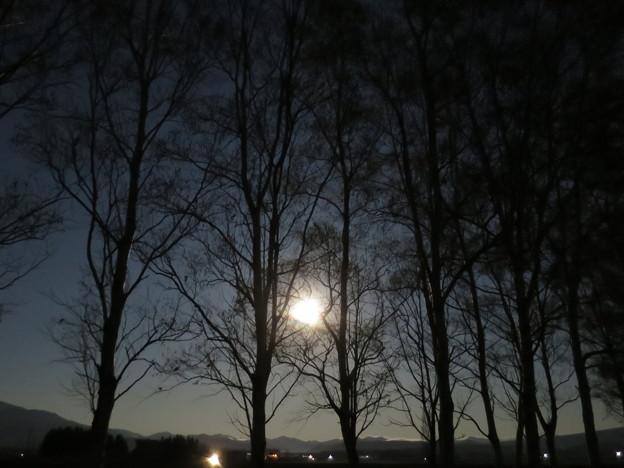 フラワームーンの夜