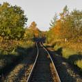 秋に染まる鉄路