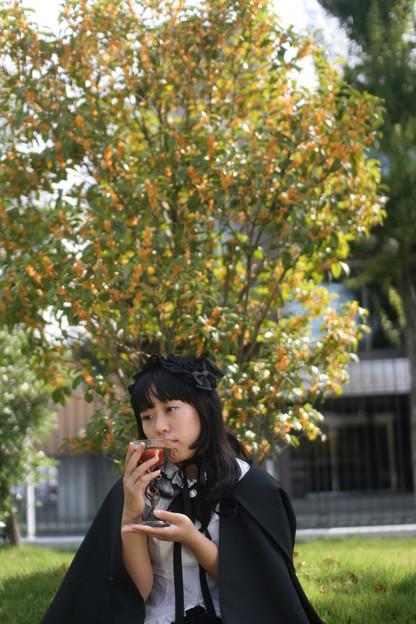 Photos: 0009-13pz