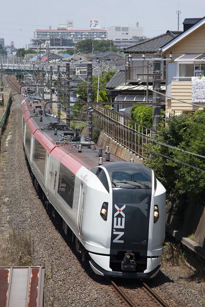 _MG_0906 E259系成田エクスプレス
