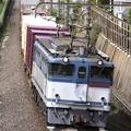 Photos: _MG_0652 「蘇我貨物」1091レ EF65 2084