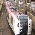Photos: _MG_1038_SILKY  E259系 成田エクスプレス