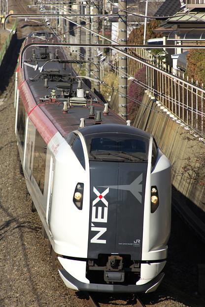 _R8A0047_SILKY E259系 成田エクスプレス