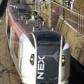 Photos: _R8A0047_SILKY E259系 成田エクスプレス