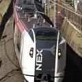 Photos: _R8A0150_SILKY E259系成田エクスプレス