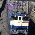 Photos: _R8A0213_SILKY 1091レ 蘇我貨物