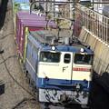 Photos: _R8A0234_SILKY 「蘇我貨物」 1091レ