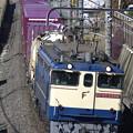 _R8A0270_SILKY 鹿島貨物 1093レ