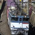 Photos: _R8A0284_SILKY 「鹿島貨物」 1093レ