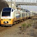 Photos: _R8A1365_SILKY E653系
