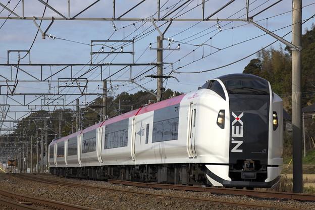 Photos: _R8A1864_SILKY E259系成田エクスプレス