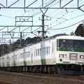 Photos: _R8A1871_SILKY 185系「成田山初詣伊東号」