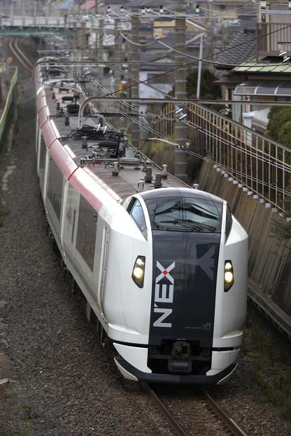 _R8A2135_SILKY 成田エクスプレス E259系 Ne015編成