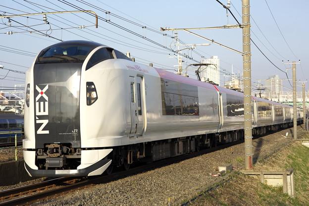 2218 E259系 成田エクスプレス