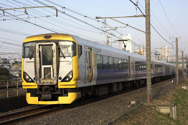 Photos: 2221 E257系500番台 新宿さざなみ