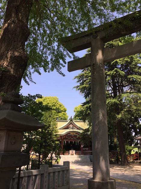 4月_葛西神社 1