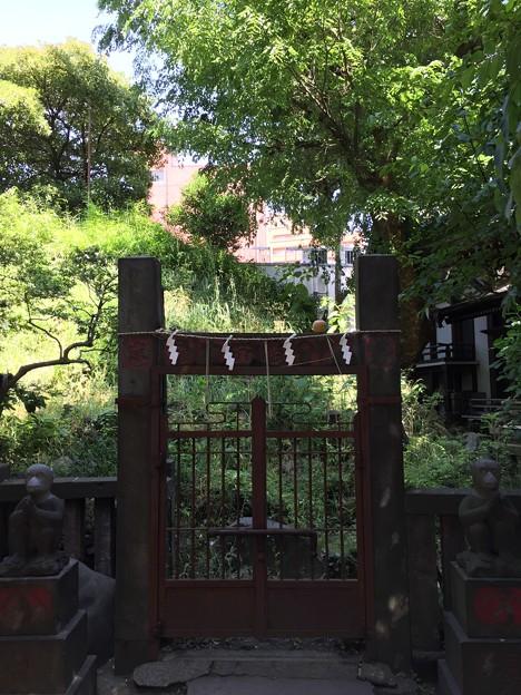 6月_小野照崎神社 2