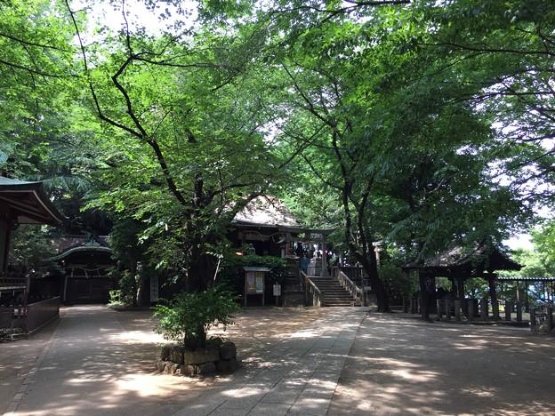 6月_諏方神社 1