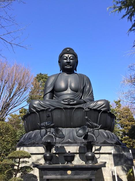 2月_乗蓮寺 2