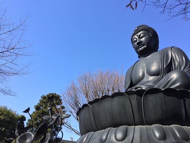 2月_乗蓮寺 3
