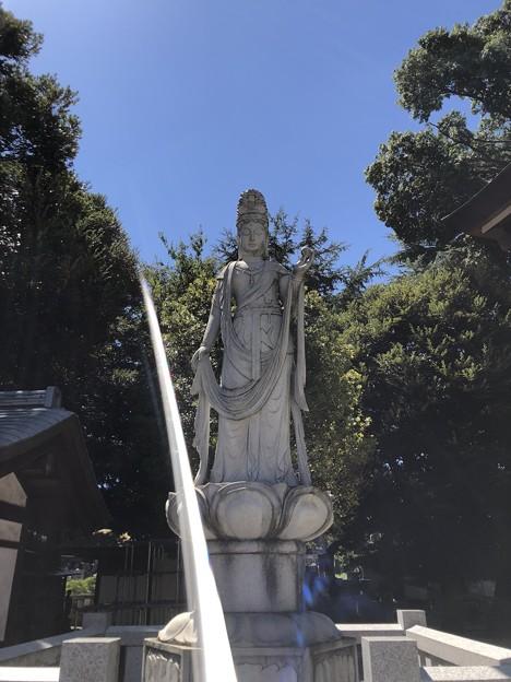 8月_東光寺 3