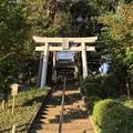 Photos: 10月_八坂神社 1