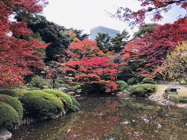 12月_東京都庭園美術館 1