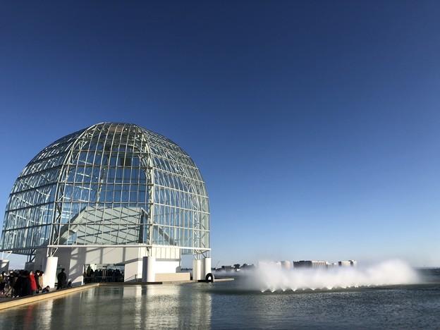 Photos: 1月_葛西臨海水族園 1