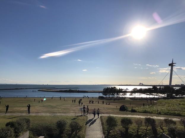 1月_葛西臨海公園 2