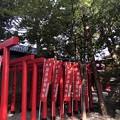 Photos: 2月_須原大社 2