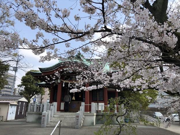 3月_洲崎神社 2