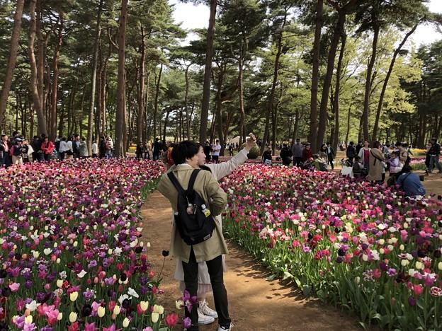 4月_国営ひたち海浜公園 h