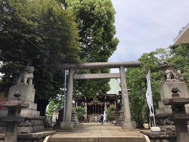 5月_諏訪神社 1