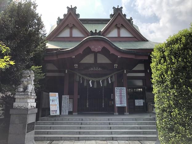 8月_八幡八雲神社 1