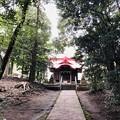 Photos: 9月_元町八幡神社 3