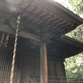 Photos: 9月_国分寺 5