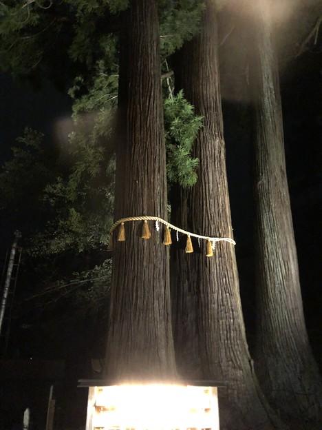 9月_日枝神社 5