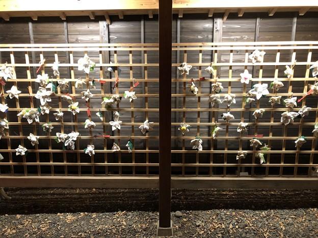 9月_日枝神社 6