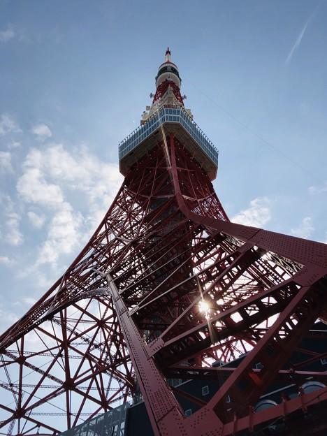 11月_東京タワー 1