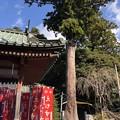 11月_筑波山神社 6