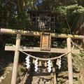 11月_筑波山神社 7