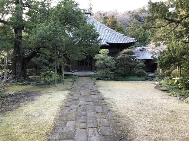 1月_寿福寺 2
