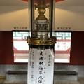 Photos: 1月_四天王寺 9