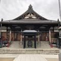 Photos: 2月_円通寺 1