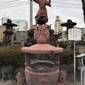 Photos: 2月_円通寺 4