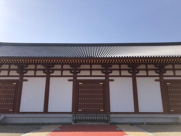 3月_薬師寺 g
