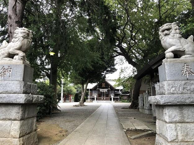 9月_日吉神社 1