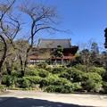 Photos: 10月_上野恩賜公園 1