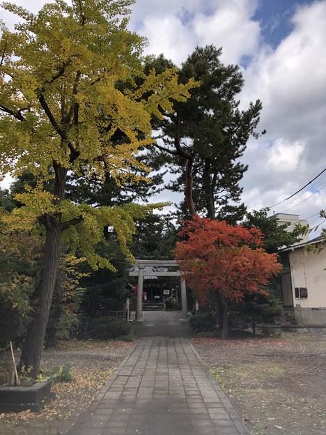 11月_諏訪神社 1