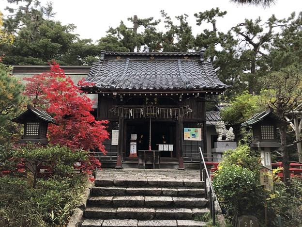 11月_諏訪神社 3